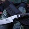 Black Palm Hunter
